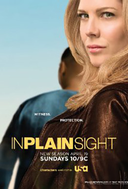 In_Plain_Sight_
